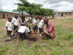 Les enfants apprennent à planter des arbres
